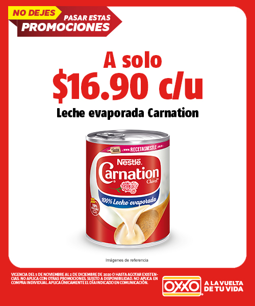 Leche Evaporada Carnation 360gr