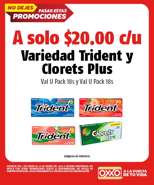 Variedad Trident Val U Pack 18s