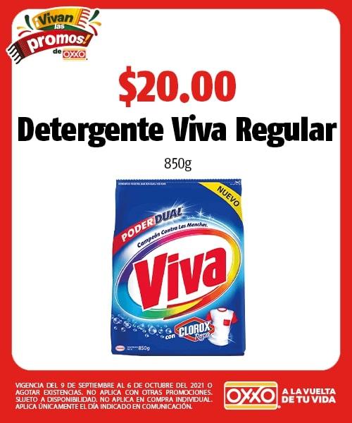 Detergente Viva Regular