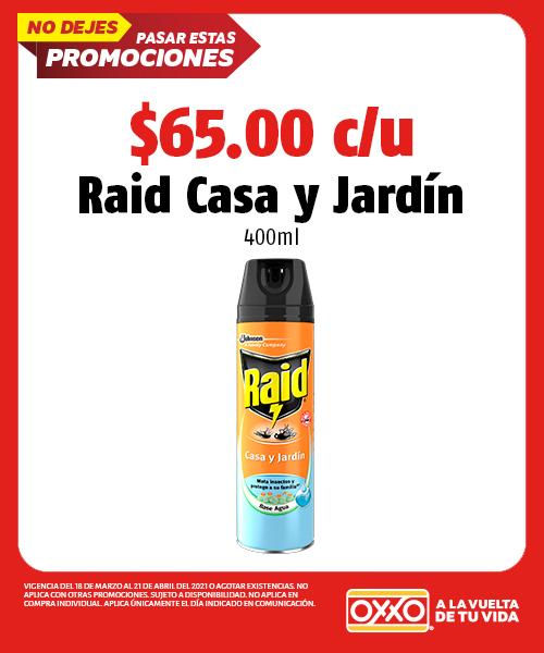 Raid Casa y Jardín 400ml