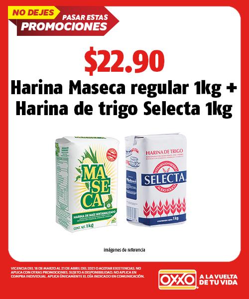 Harina Maseca Regular  1kg