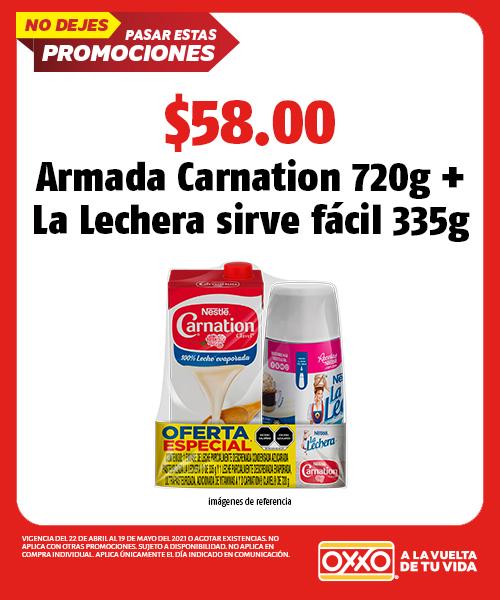 Armada Carnation